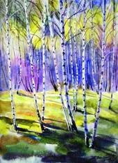 Silver Birch Trees in Early Autumn